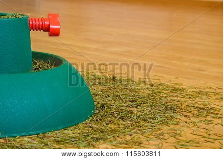 Pine needles from the Christmas tree