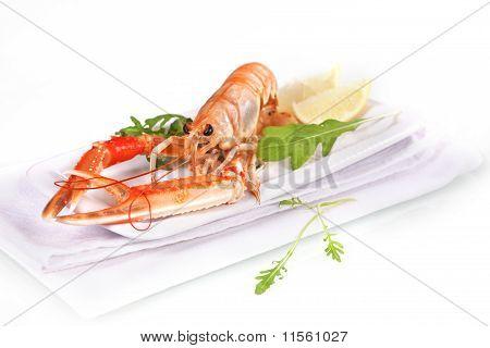 Seafood. Langoustine.