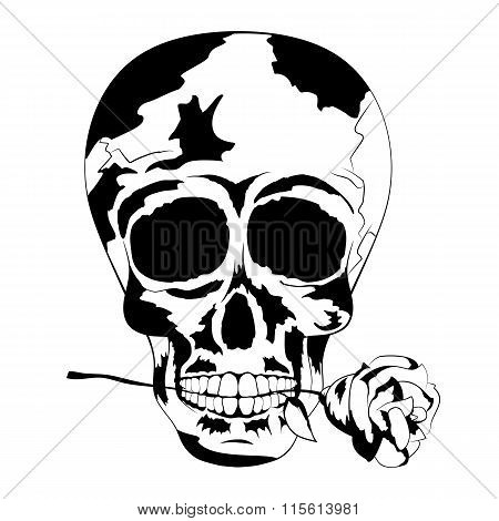 Black And White Human Skull With Rose In The Mouth. Tattoo Skull