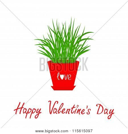 Happy Valentines Day. Grass Growing In Red Flower Pot Icon Isolated Love White Background Flat Desig