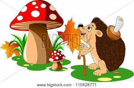 Hedgehog And Mushroom