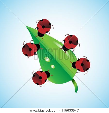 Concept Of Teamwork. Bugs Together Carrying Leaf, This Also Represent Unity, Togetherness & Strength