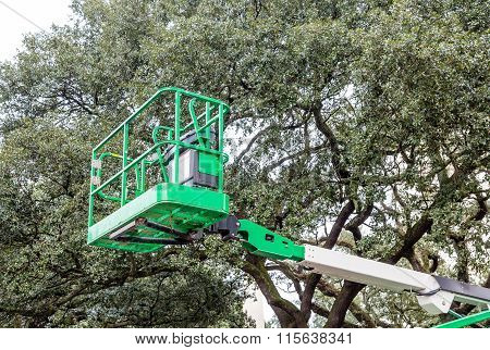 Green Lift By Green Tree