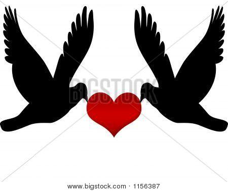 Two Birds In Love
