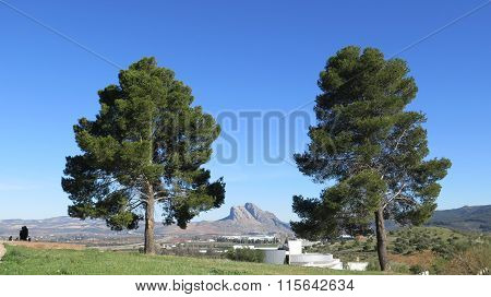 Lovers Rock, Antequera