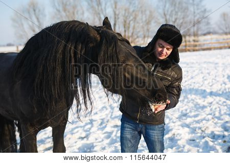 The Man Feeding Horse