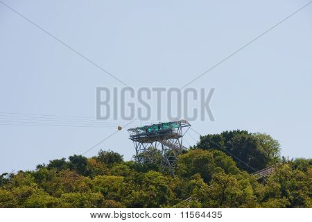 Zip Line Tower Over Tropical Trees