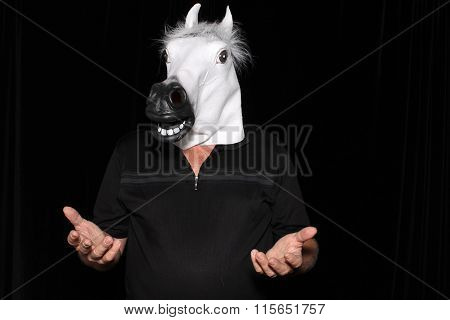 An unidentifiable man wears a White Rubber Horse Head Mask while in a Photo Booth.