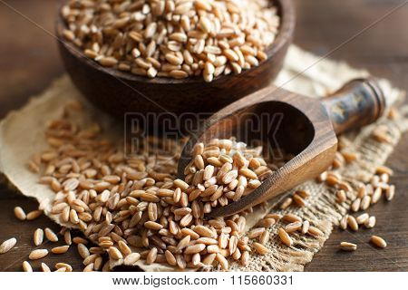 Uncooked Whole Spelt In A Bowl With A Wooden Spoon