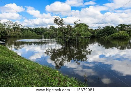 Yacuma River. Bolivian Jungle.