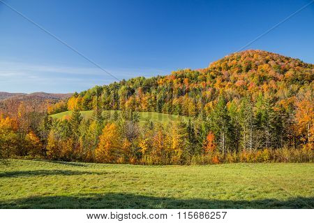 Autumn Foliage In Vermont Countryside, Vt