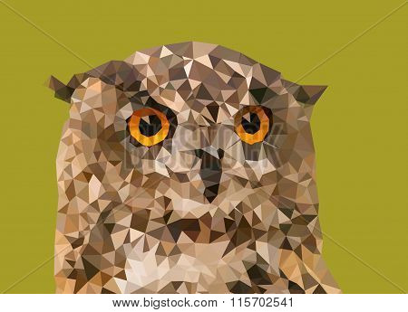 Eurasian eagle-owl from triangles