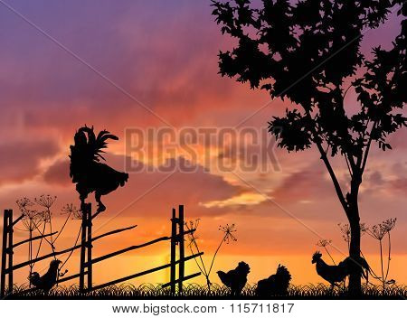 illustration with poultry near fence on sunset background