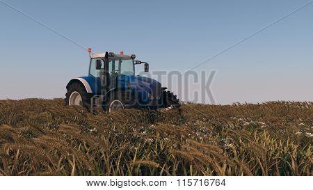 blue tractor in  ripen wheat field
