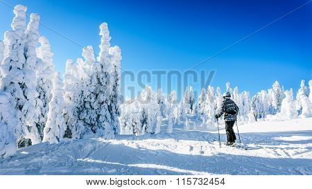 Woman on skis enjoying the winter landscape