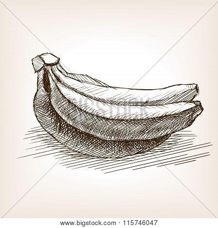 Banana sketch style vector illustration
