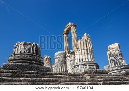 Part Of Columns In Temple Apollo Didim
