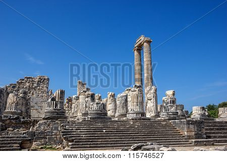 View Of Temple Of Apollo In Didim