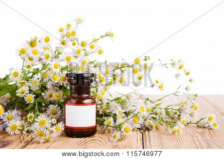 Herbal Medicine Concept - Bottle With Camomile On Wooden Table