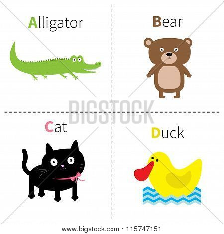 Letter A B C D Alligator Cat Bear Duck Zoo Alphabet. English Abc With Animals Education Cards For Ki