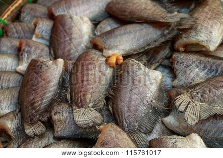 Thailand Fish Market