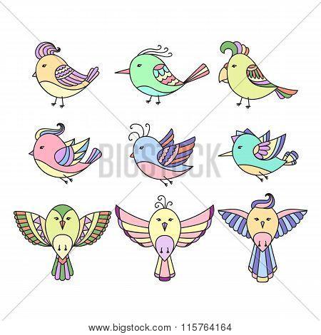 Set of 9 cute birds in vector