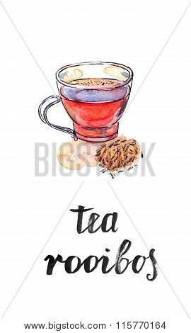 Cup Of Healthy And Tasty Traditional Herbal Rooibos Red Beverage Tea With Spices