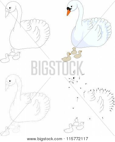 Cartoon Swan With Her Chicks. Vector Illustration. Dot To Dot Game For Kids