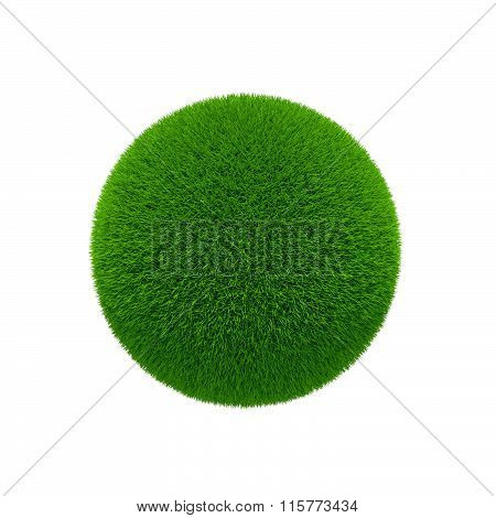Green Grass Globe Isolated Over White