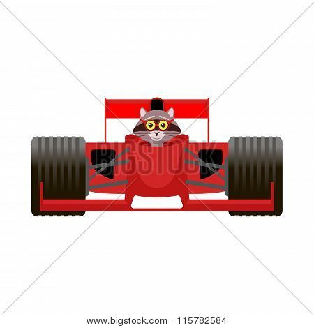 Raccoon Driving A Red Racing Bolide Car