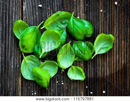 Fresh basilic leaves