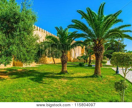 The Gardens Of Sousse