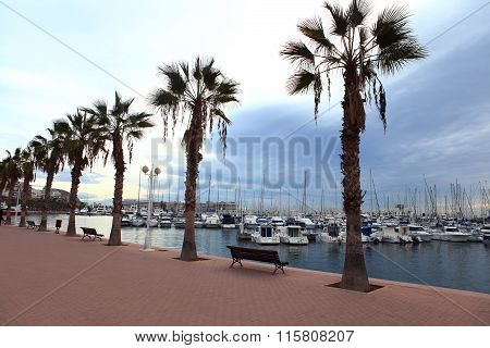 Alicante, Spain - January 4, 2016  - palm trees and a bench on the waterfront on the background of y