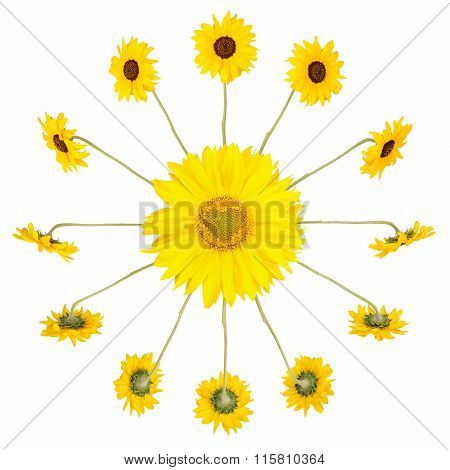 Clock With Sunflowers