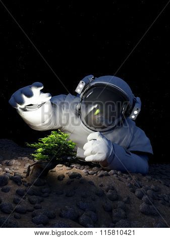 Astronaut and a tree in space.