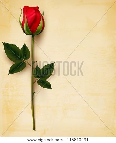 Happy Valentine's Day background. Single red rose on an old paper background. Vector.