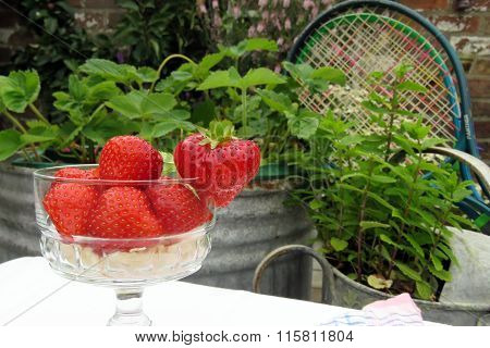 Strawberries and Tennis
