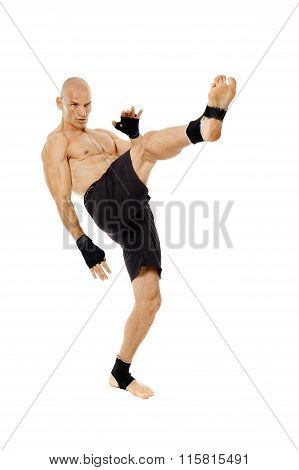 Kickbox Fighter Full Length