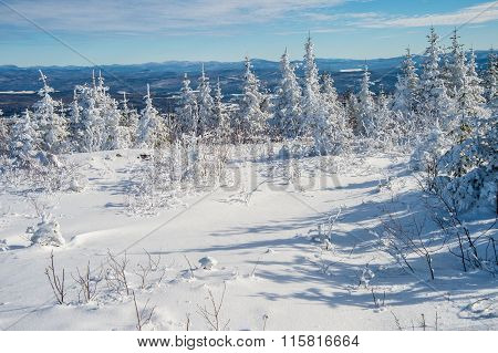 Beautiful Snowy Landscape In Quebec, Canada
