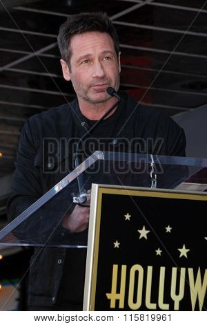 LOS ANGELES - JAN 25:  David Duchovny at the David Duchovny Hollywood Walk of Fame Star Ceremony at the Fox Theater on January 25, 2016 in Los Angeles, CA