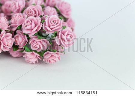 Light Magenta Roses In Wood Isolated Background