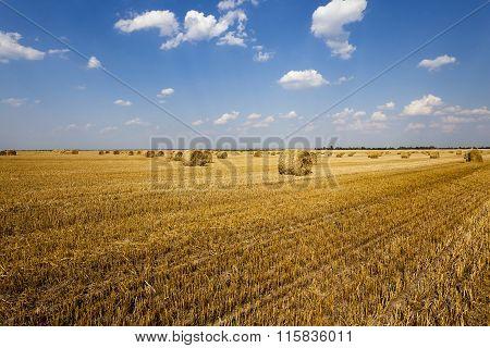 haystacks straw ,  summer