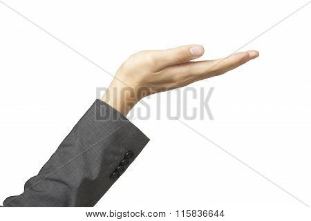 Beautiful Woman's Hand In Business Suit Sleeves And Palm Up In White Isolated Background.