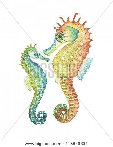 Mom and baby Seahorses, watercolor illustration.