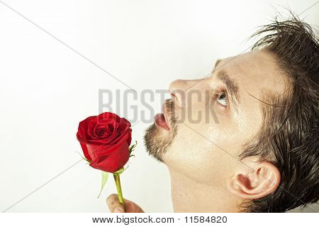Young Men Smell The Red Rose Isolated On White Background