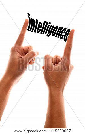 Less Intelligence Metaphor