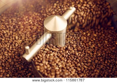 Aromatic coffee beans freshly roasted in a modern roasting machi