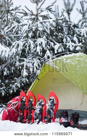 Tent in the winter forest.