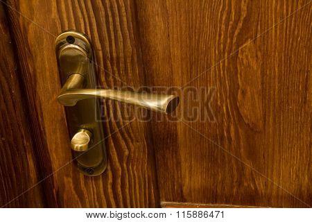Door handle and wooden door