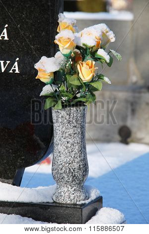 roses at the cemetery in winter